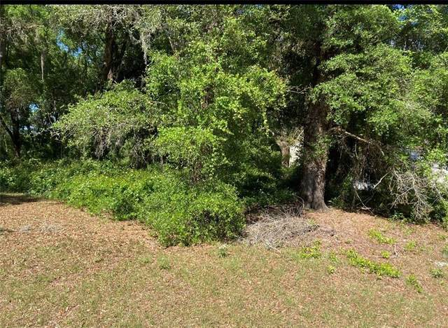 167 LN, Citra, FL 32113 (MLS #OM617842) :: Alpha Equity Team