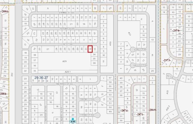 1314 Elne Street SW, Palm Bay, FL 32908 (MLS #OM617953) :: MVP Realty