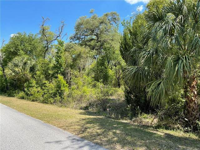 00 SW Indian Hill Drive, Dunnellon, FL 34431 (MLS #OM618002) :: Griffin Group