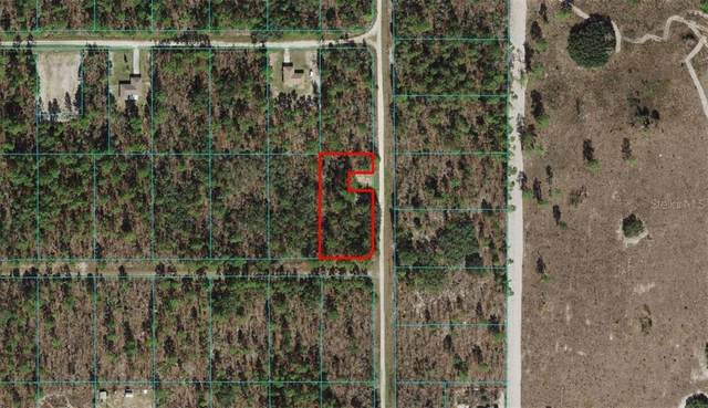 0 SW 121ST TERRACE, Ocala, FL 34481 (MLS #OM618065) :: Premier Home Experts