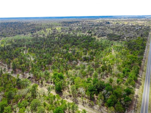 TBD W Hwy 328, Dunnellon, FL 34432 (MLS #OM618152) :: Griffin Group