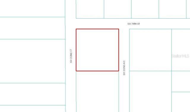 Sw 202Nd Avenue, Dunnellon, FL 34431 (MLS #OM618208) :: Armel Real Estate