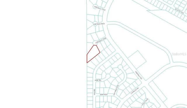 Emerald Track, Ocala, FL 34472 (MLS #OM618216) :: Godwin Realty Group
