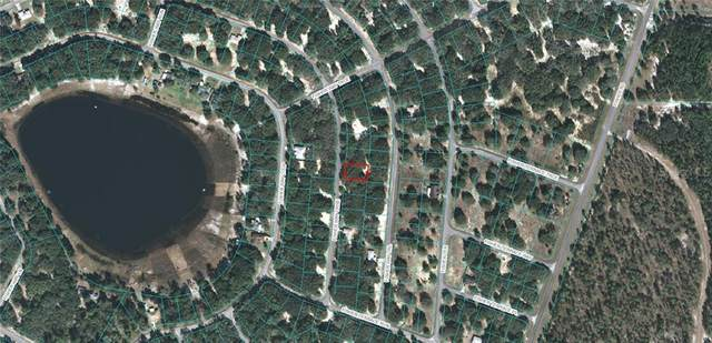 Fisher Way Course, Ocklawaha, FL 32179 (MLS #OM618218) :: McConnell and Associates