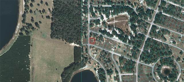 Malauka Circle Lane, Ocklawaha, FL 32179 (MLS #OM618223) :: McConnell and Associates