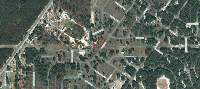 Guava Terrace, Ocklawaha, FL 32179 (MLS #OM618224) :: McConnell and Associates