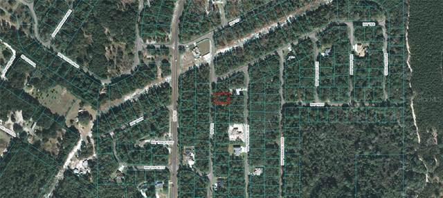 Bay Drive, Ocklawaha, FL 32179 (MLS #OM618225) :: Bob Paulson with Vylla Home