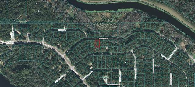 Sequoia Drive, Ocklawaha, FL 32179 (MLS #OM618226) :: Bob Paulson with Vylla Home