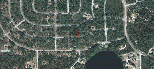 Fisher Course, Ocklawaha, FL 32179 (MLS #OM618229) :: Rabell Realty Group