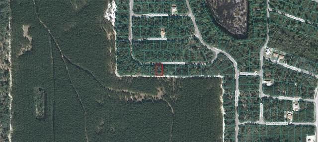 Malauka Pass Course, Ocklawaha, FL 32179 (MLS #OM618232) :: Vacasa Real Estate
