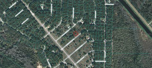 Sequoia Drive Course, Ocklawaha, FL 32179 (MLS #OM618234) :: Armel Real Estate
