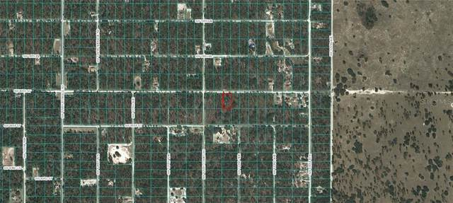 SW 80TH ST, Dunnellon, FL 34432 (MLS #OM618293) :: Griffin Group