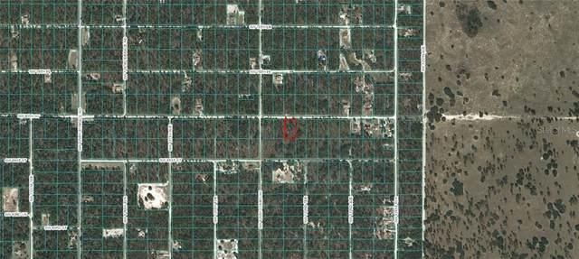 SW 80TH ST, Dunnellon, FL 34432 (MLS #OM618293) :: Zarghami Group