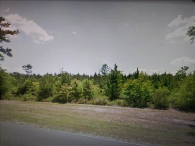 NW County Rd 229, Starke, FL 32091 (MLS #OM618343) :: Armel Real Estate