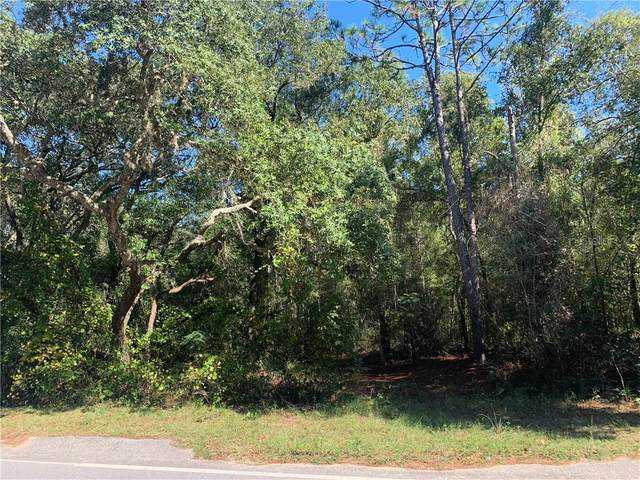 205 Baden Powell, Hawthorne, FL 32640 (MLS #OM618437) :: The Heidi Schrock Team
