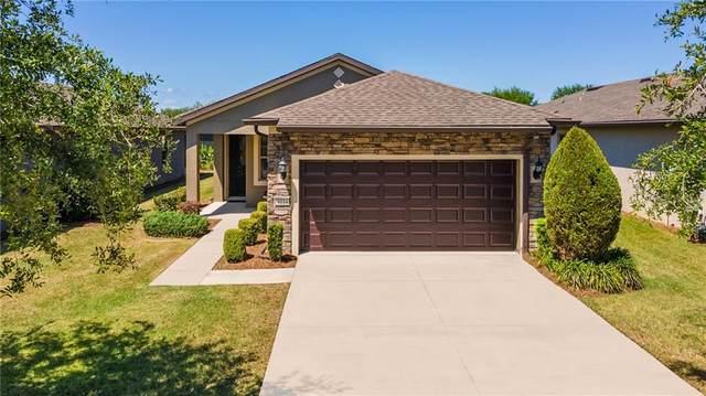 9114 SW 70TH Loop, Ocala, FL 34481 (MLS #OM618447) :: Armel Real Estate