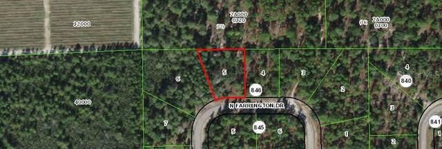 8953 N Farrington Drive, Citrus Springs, FL 34433 (MLS #OM618475) :: The Robertson Real Estate Group