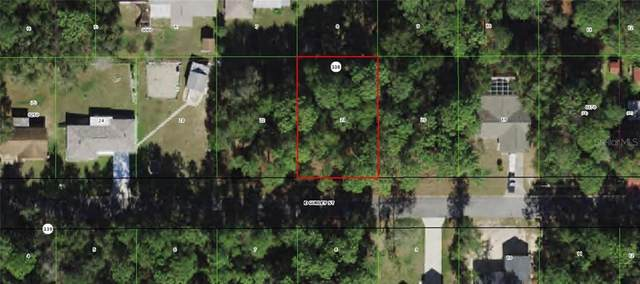 6677 E Gurley St., Inverness, FL 34452 (MLS #OM618484) :: The Kardosh Team