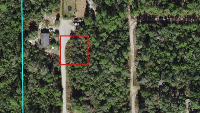 SE 213 TERR, Umatilla, FL 32784 (MLS #OM618513) :: Realty Executives in The Villages