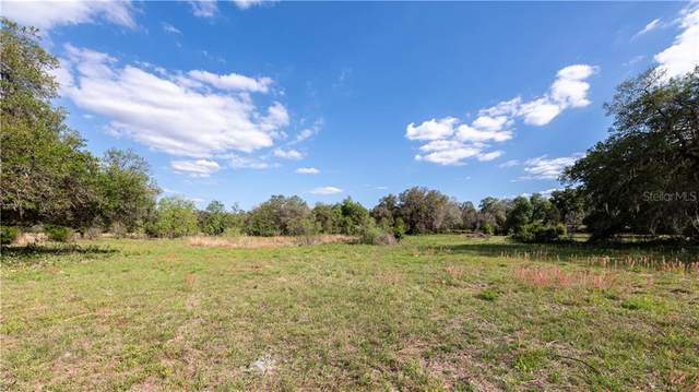 0 Cr 614, Bushnell, FL 33513 (MLS #OM618519) :: Visionary Properties Inc