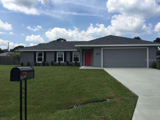12300 SE 100TH Court, Belleview, FL 34420 (MLS #OM618525) :: McConnell and Associates