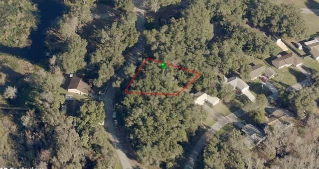 9255 E Mistwood Drive, Inverness, FL 34450 (MLS #OM618535) :: Premier Home Experts
