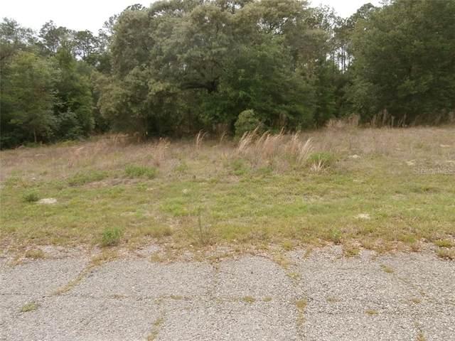 8676 N Elida Ave, Citrus Springs, FL 34434 (MLS #OM618538) :: Armel Real Estate