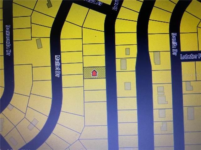 121 Bowfin Drive, Palatka, FL 32177 (MLS #OM618583) :: Premier Home Experts