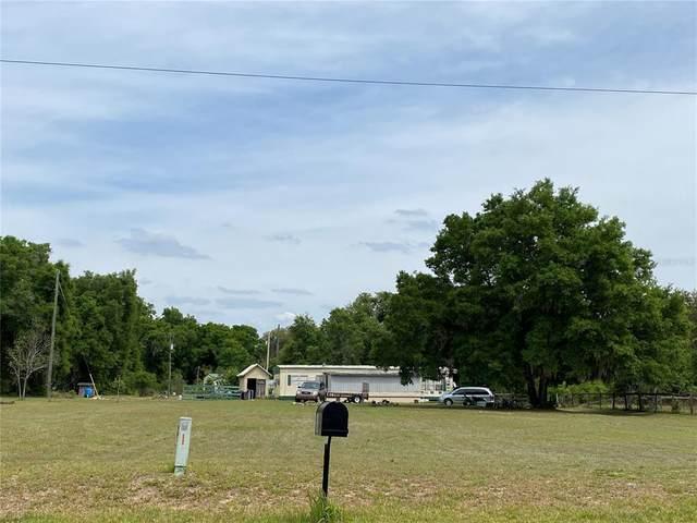 1989 NE 145TH AVENUE Road, Silver Springs, FL 34488 (MLS #OM618656) :: Lockhart & Walseth Team, Realtors