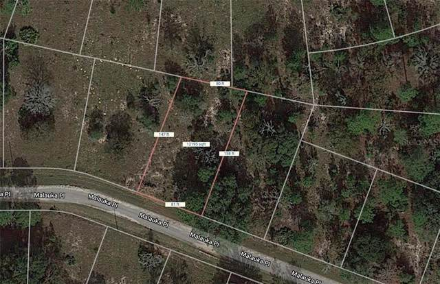Malauka Place, Ocklawaha, FL 32179 (MLS #OM618666) :: Vacasa Real Estate