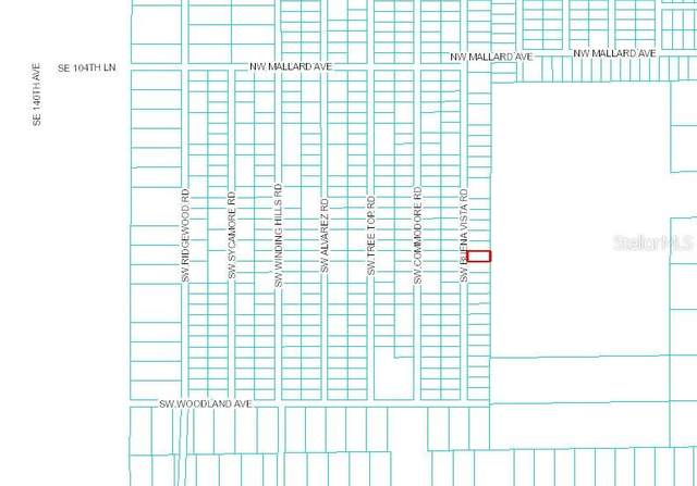 0 Sw Buena Vista Rd, Dunnellon, FL 34431 (MLS #OM618685) :: Vacasa Real Estate
