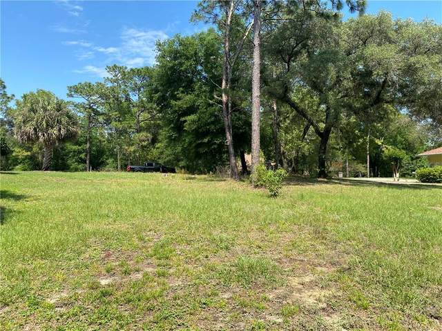 SW 196TH Street, Dunnellon, FL 34432 (MLS #OM618712) :: Sarasota Property Group at NextHome Excellence