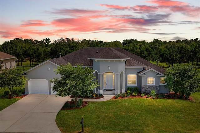 6296 SE 96TH Street, Belleview, FL 34420 (MLS #OM618743) :: Premier Home Experts