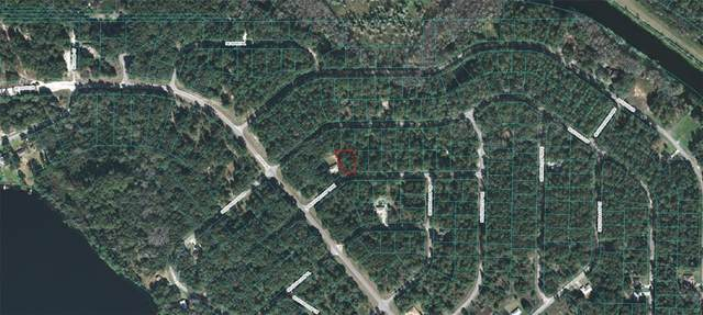 Sequoia Loop Trak, Ocklawaha, FL 32179 (MLS #OM618756) :: CGY Realty