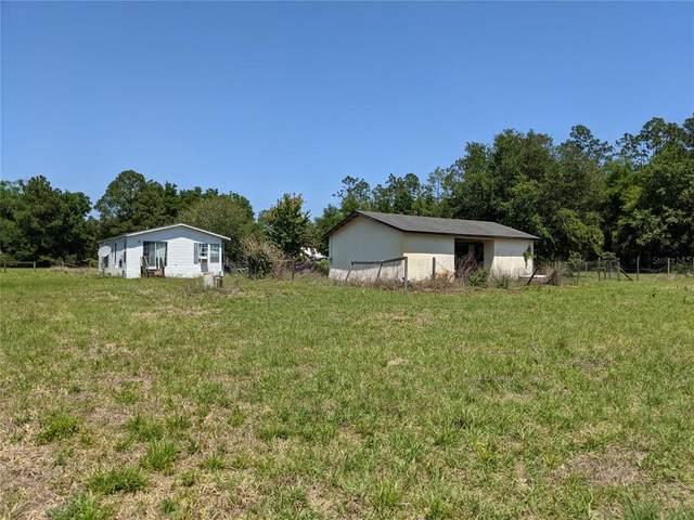 17480 SE 95TH STREET Road, Ocklawaha, FL 32179 (MLS #OM618762) :: Vacasa Real Estate