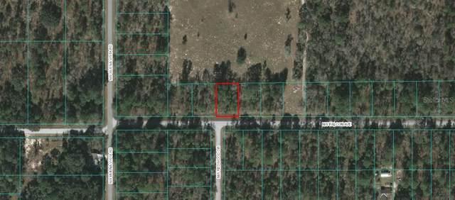 0 NW Falcon Avenue, Dunnellon, FL 34431 (MLS #OM618802) :: The Lersch Group