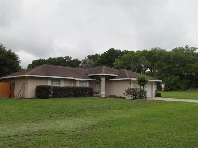 2997 SE 146TH Lane, Summerfield, FL 34491 (MLS #OM618839) :: Your Florida House Team