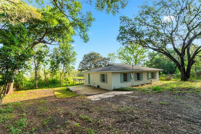 17301 SE 54TH Street, Ocklawaha, FL 32179 (MLS #OM618842) :: Premier Home Experts