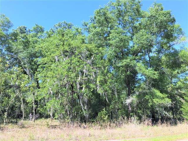 lot 12 NE 4TH Street, Williston, FL 32696 (MLS #OM618844) :: CGY Realty