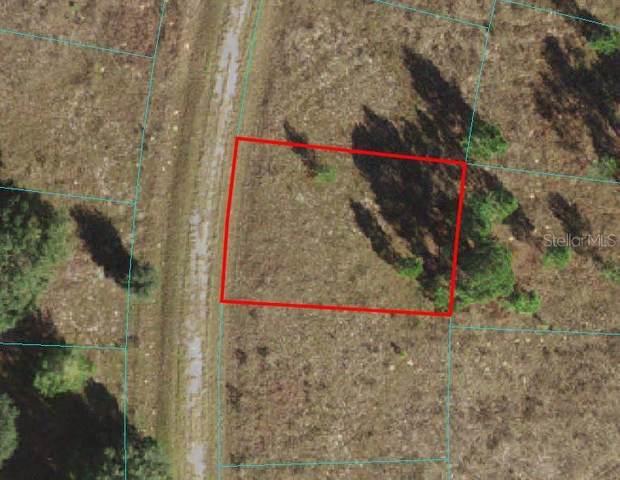 TBD Maple Lane Way, Ocklawaha, FL 32179 (MLS #OM618958) :: Vacasa Real Estate
