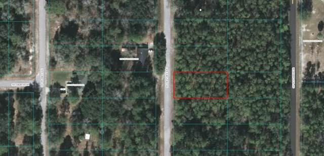 TBD SW Westview Avenue, Dunnellon, FL 34431 (MLS #OM618961) :: Rabell Realty Group