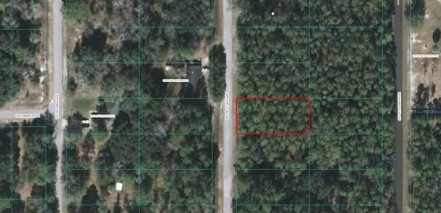 TBD SW Westview Avenue, Dunnellon, FL 34431 (MLS #OM618961) :: Premier Home Experts