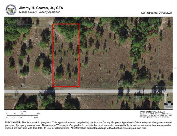 TBD SW Cardinal Avenue, Dunnellon, FL 34431 (MLS #OM618965) :: Armel Real Estate