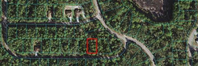 TBD Malauka Pass Course, Ocklawaha, FL 32179 (MLS #OM618996) :: Armel Real Estate