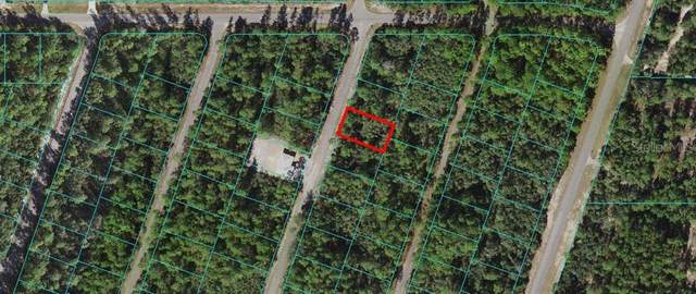 0 Fisher Way Trak, Ocklawaha, FL 32179 (MLS #OM618997) :: Armel Real Estate