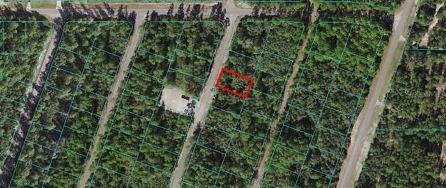 0 Fisher Way Trak, Ocklawaha, FL 32179 (MLS #OM618997) :: Armel Real Estate