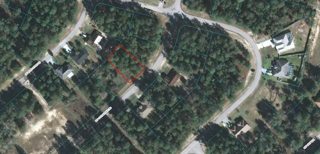 0 SW 47 AVENUE ROAD, Ocala, FL 34473 (MLS #OM619002) :: Bob Paulson with Vylla Home