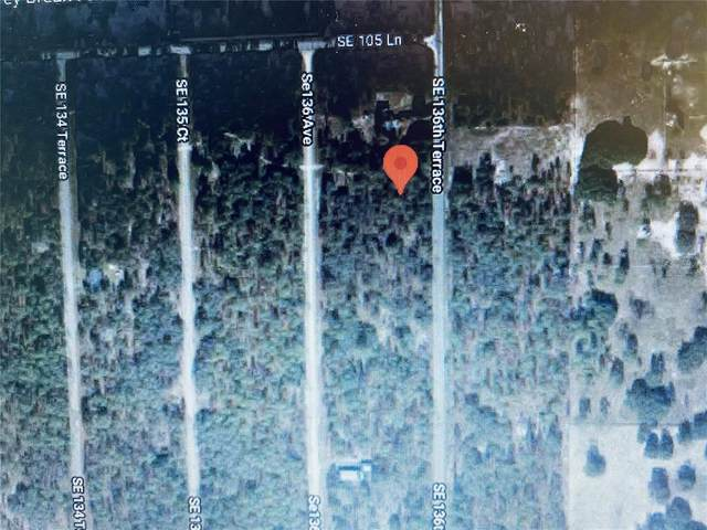 00 SE 136TH Terrace, Dunnellon, FL 34431 (MLS #OM619073) :: The Robertson Real Estate Group