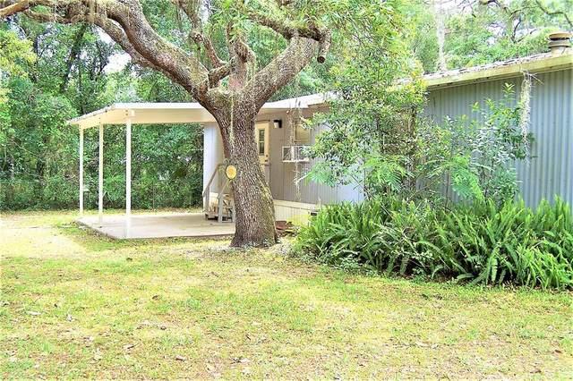 6771 N Charles Terrace, Hernando, FL 34442 (MLS #OM619074) :: Your Florida House Team