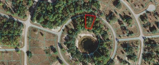 0 Malauka Circle, Ocklawaha, FL 32179 (MLS #OM619119) :: RE/MAX Local Expert